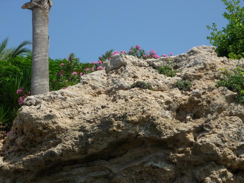 http://sttravels.ru/images/strana/kipr/turist/ANNA/60.JPG
