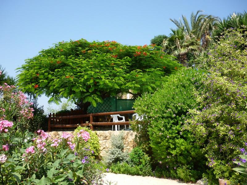 http://sttravels.ru/images/strana/kipr/turist/ANNA/65.JPG
